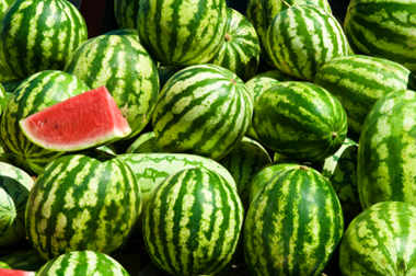 Wholesale Watermelons Long Island